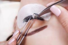 Procédure d'extension de cil Oeil de femme avec de longs cils Mèches, fin, macro, foyer sélectif photos libres de droits