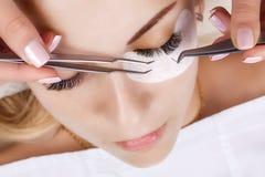 Procédure d'extension de cil Oeil de femme avec de longs cils Mèches, fin, macro, foyer sélectif photo libre de droits
