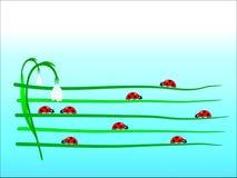 Procedere del Ladybug illustrazione vettoriale