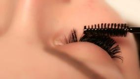 Procedimento da extensão da pestana Olho da mulher com pestanas longas Chicotes, fim acima, macro, foco seletivo video estoque