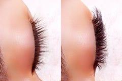 Procedimento da extensão da pestana Comparação dos olhos fêmeas antes e depois Foto de Stock Royalty Free