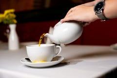 procedimento de fabricação do chá imagens de stock royalty free