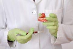 Procedimento dental, trabalhos protéticos fotografia de stock