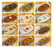 Procedimentos prontos das refeições de Turquia Fotos de Stock