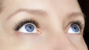 Procedimiento de la extensión de la pestaña - los ojos de la moda de la mujer con las pestañas falsas largas cerca para arriba, b imagenes de archivo