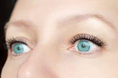 Procedimiento de la extensión de la pestaña - los ojos de la moda de la mujer con las pestañas falsas largas cerca para arriba, b foto de archivo
