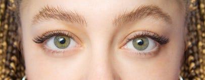 Procedimiento de la extensión de la pestaña Ojo de la mujer con las pestañas falsas largas El cierre encima del tiro macro de la  fotos de archivo