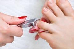 Procedimiento de Pedicure, cortando los uñas del dedo del pie fotos de archivo