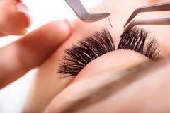 Procedura di estensione del ciglio Occhio della donna con i cigli lunghi Sferze, fine su, macro, fuoco selettivo Immagini Stock