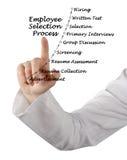 Procedura di selezione degli impiegati Immagini Stock