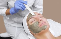 The procedure for applying a mask from clay to the face of a beautiful woman. Spa treatments and care of the cats in the beauty salon Stock Photos
