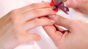 The procedure of painting nails in the spa salon.Manicure procedure in the beauty salon.Spa manicure procedure stock video