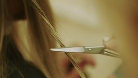 Proces om Haarclose-up Te snijden stock video