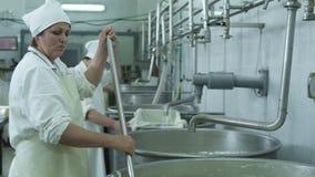 Proces om kaas te maken stock videobeelden