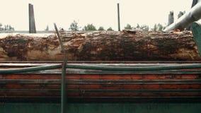 Proces om logboeken bij zaagmolen machinaal te bewerken Verwerking van hout bij zaagmolen stock footage