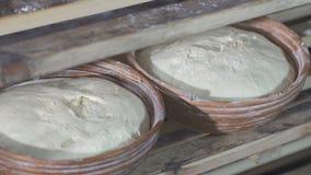 Proces piec chleb w piekarni zdjęcie wideo