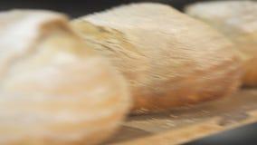 Proces piec chleb w piekarni zbiory wideo