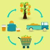 Proces pomarańczowa owoc Fotografia Stock