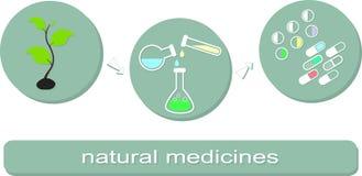 Proces produkcyjny naturalne medycyny Zdjęcia Stock