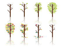 Proces van een boom - Vectorbeeld Stock Foto