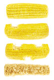 Proces van geïsoleerd eten cornstick Stock Foto