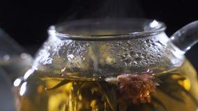 Proces warzyć ziołowej herbaty w szklanym przejrzystym teapot, dom herbaciana ceremonia zbiory wideo