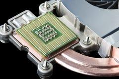 Procesador, disipador de calor y ventilador del ordenador Imágenes de archivo libres de regalías