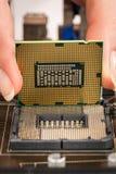 Procesador y placa madre modernos Imagen de archivo