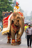 Procesión del elefante para Lao New Year 2014 en Luang Prabang, Laos Imagen de archivo libre de regalías