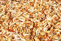 Proceso cocido al vapor y Sun ried de los camarones foto de archivo