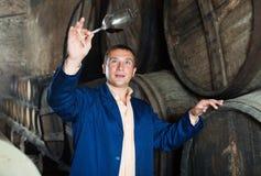 Proceso de envejecimiento de custodia masculino del vino fotografía de archivo libre de regalías