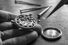 Proceso de instalar una pieza en un reloj mecánico, reparación del reloj Imágenes de archivo libres de regalías