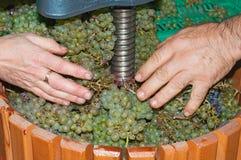 Proceso de la elaboración de vino con una máquina de trituración de la uva manual Foto de archivo