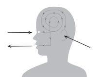 Proceso de la opinión y del reac Ilustración del Vector