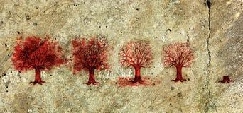 Proceso de la vida del árbol en cinco etapas. Fotos de archivo