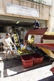 Proceso de las uvas en Collioure Foto de archivo