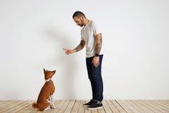 Proceso del entrenamiento del perro en casa Imagenes de archivo