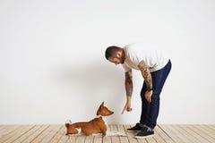 Proceso del entrenamiento del perro en casa Fotos de archivo