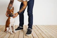 Proceso del entrenamiento del perro en casa Fotos de archivo libres de regalías