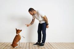 Proceso del entrenamiento del perro en casa fotografía de archivo libre de regalías
