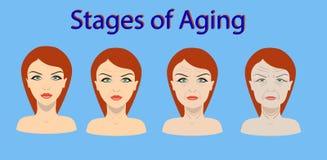 Proceso del envejecimiento del vector Cuatro etapas de cambio de la cara ilustración del vector