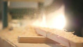 Process av att såga ett bräde med en chain såg, mycket sågspån stock video
