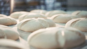 Process of baking breads in 4K stock footage