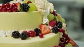 The process of cake making. Pastry chef decorates a cake with berries stock video footage
