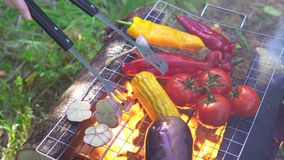 Process of cooking delicious grilled vegetables with fire stock video footage