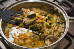 Process of cooking mussels with white sauce Stock Images
