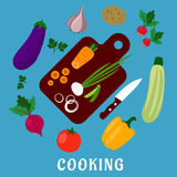 Process of cooking a vegetable salad, flat style Stock Photography