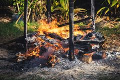 The process of cremation in the Andaman and Nicobar Islands. Hindu traditions. The islanders of the deceased are cremated on the bonfire on the shore of the royalty free stock photos