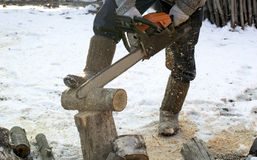 The process of cutting firewood with chainsaw Stock Image