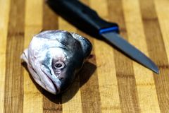 Process of cutting fish, cut fish head on a wooden board Stock Image
